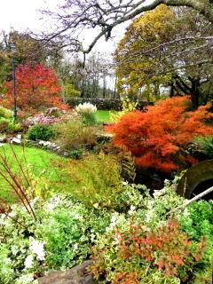 Granary gardens in autumn