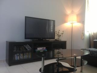 Flatscreen TV with video player (free rental of disc) and cable TV