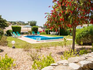 View of pool from the orchard