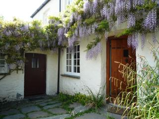 Above the front door is a magnificent Wisteria