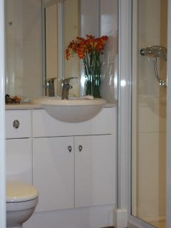 En-suite toilet with electric shower, hairdryer and complimentary toiletries.
