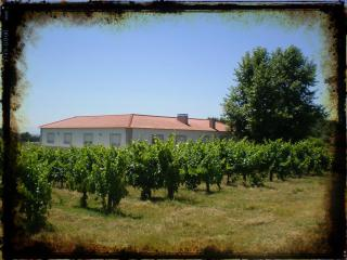 Casa do Linhar - Quintas de Sirlyn - Wine producer