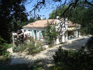 Villa des Roses near Uzes