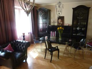 Luxurious & spacious one bedroom, great location, Warsaw