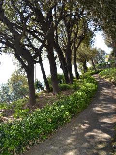 the villa: park promenade