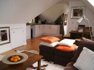 Modern Living - open plan kitchen/dining/living area