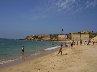 Centrico, Piscina, Y Playas