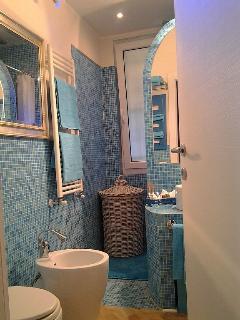 the batheoom with shower