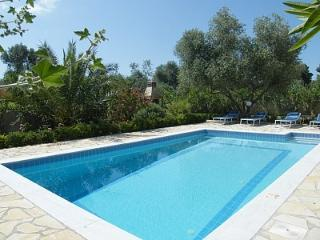 The pool, garden and barbecue