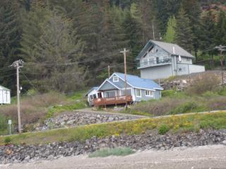 fishing, fly fishing, bears, eagles,whales,, Hoonah