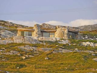 The Rock House is nestled into the landscape, built into a natural rock garden