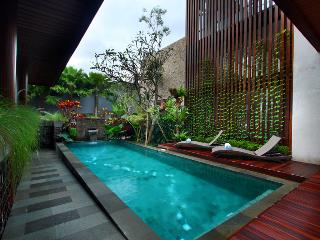 Canggu New 4 Bedroom Villa, Seminyak