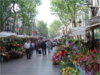 RAMBLA PISO LINDO MUY 10 MIN DE CAMMINO, Barcelona