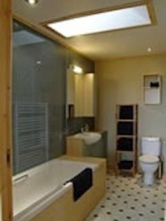Bathroom in Chalet with shower over tub