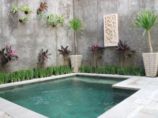 Private Plunge Pool in large 4 bedroom in private complex