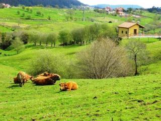 Casa Rural de 100 m2 de 3 habitaciones en Llanes