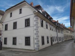 Cute little central studio, Ljubljana