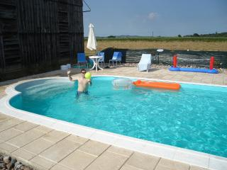 The swimming pool with toys!