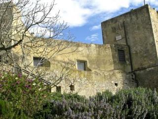 Talamon Tower, Grosseto