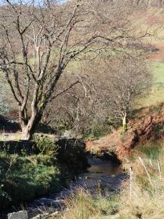 Afon Machno (River Machno) about 20 metres from the front door!