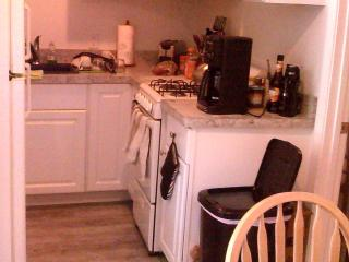A well equipped Kitchen for a cook!