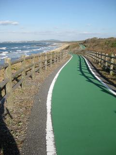 7.4km Beach Cycling couse along the beach.(Onga-Munakata Cycling road)
