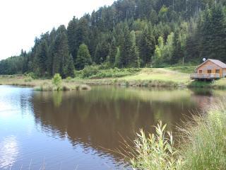 chalet avec étang privé véritable havre de paix