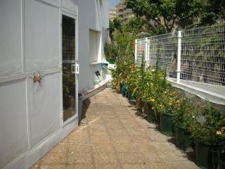 217- Esturion 101, La Antilla