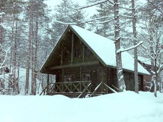 Big Foot Cabin Hakuba
