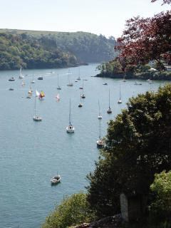 Dartmouth Views - The river Dart looking towards the sea