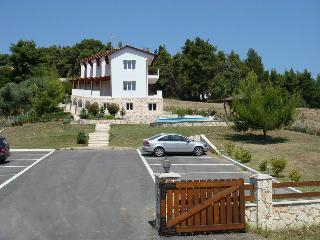 NIRVANA, Paliouri