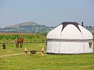 View of the tor and the horses grazing from the yurts