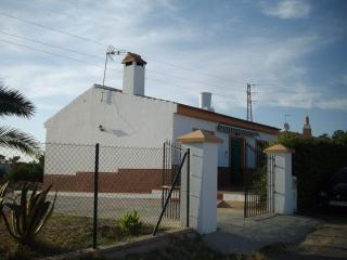 230- Pinares de Lepe, La Antilla