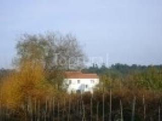 Casa Rustica 2/4 pessoa, Arganil 2km, vista bonita