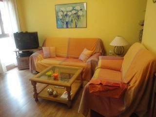 Apartamento de 1 dormitorio en Biescas