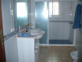 segundi cuarto de baño, muy amplio y muy comodo con una gran ducha