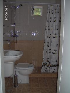 toilet shower wet room
