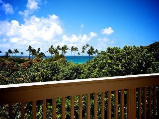Poipu BEACH steps from your door!!  Sleeps 7+ BEST DEAL in POIPU ** WOW CALL!