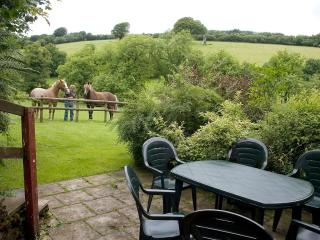 Heather Cottage - Garden view with ponies