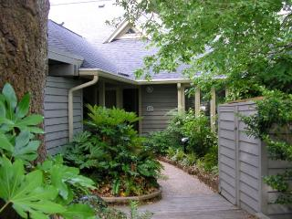 Front walkway; very private  'feel'
