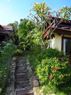 Garden by the villa