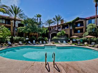 Upscale & Contemporary, Gated, Pool, Wi-Fi, Gym!