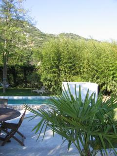 Pool, garden and Luberon