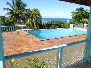 Gorgeous sea view villa with huge pool and terrace, Old Town