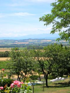 Enjoy the views from anywhere on the domaine
