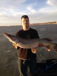 Northern pike caught from the dock near Spencer Hill!