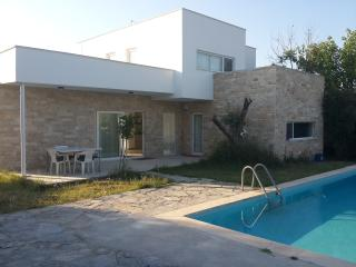 Villa Hollandia with private pool, Kusadasi