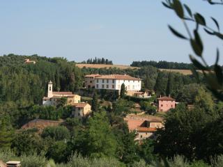 Castello di Alica, Palaia