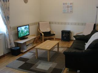Living area with comfortable sofa and flat screen TV