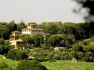 Terra di Siena - Limonaia